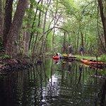 Charleston Kayak Company