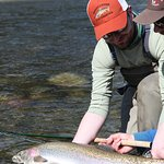 Winter steelhead trips in April