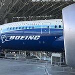 Boeing 787 beautifully displayed
