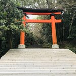 Photo of Usajingu Shrine
