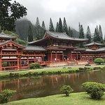 Hoku Hawaii Tours Φωτογραφία
