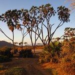 samburu national park by Terminal Tours Kenya