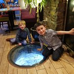 Glass covered well. Boys were amazed