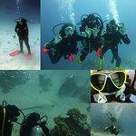 Photo of New Son Bijou Diving Center