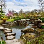 Zdjęcie Botanischer Garten - Japan Garten