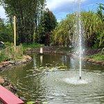 Photo de Kauai Mini Golf & Botanical Gardens