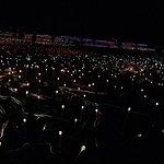 lights 50K of them