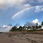 Photo de Stella Maris beach