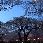 Tsutsujigaoka Park照片