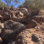 Lots of steep boulders. Not easier coming down - Echo Canyon Trail