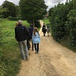 Other foot /hoofed travelers in the Cotswolds