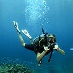 Kon-Tiki Krabi Diving & Snorkeling Center - Krabi Foto