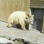 Photo de Parc Zoologique de Fort Mardyck