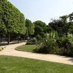 One of many paths which lead through the Champ de Mars gardens, with shaded areas and benches