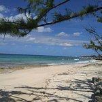 Foto di Salt Cay