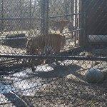 Photo de Beardsley Zoo