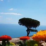Foto de Villa Rufolo