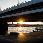 Donauinsel Foto