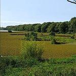Photo of Reserva Ecologica