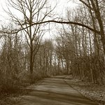 Beautiful and serene walking and riding trails.