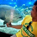Playing with the big fish hahahaha