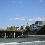 Photo of Kamogawa River