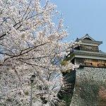 写真熊本城枚