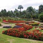 ภาพถ่ายของ สวนแม่ฟ้าหลวง