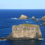 Foto di Captain Cook's Monument