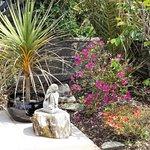 Calico Garden