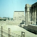 at Luxor Temple