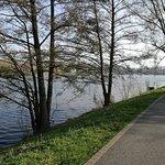Foto de Lake Aasee
