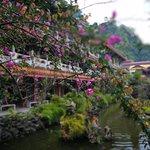 ภาพถ่ายของ Sam Poh Tong Cave Temple