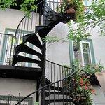 Courtyard garden and staircase