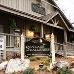 Skylake Galleries