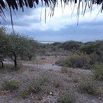 Lake Burunge Tented Camp Bild