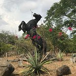 I loved these beautiful black stallion horse statues around he property!