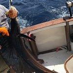 Sailfish on board