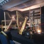 Photo of Luc Vanlaere Harpist
