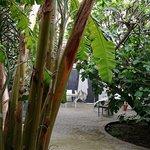 Imagen de Il Giardino di Ballaro