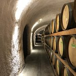 One of the caves we visited in Napa Valley with Squire Livery