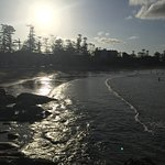 Manly Scenic Walkway Foto