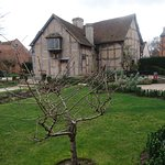 Shakespeare's birthplace - garden