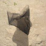 Photo of Bessa Beach