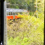 箱根登山電車 (箱根登山鉄道)の写真