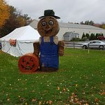 Scarecrow outside in Yankee