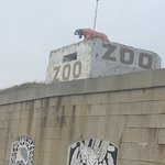 Billede af Isle of Wight Zoo