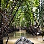 Sampan among the mangrove swamps