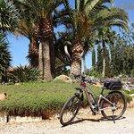 Mediterrane Natur genießen