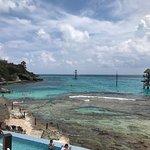 Foto di Garrafon Natural Reef Park